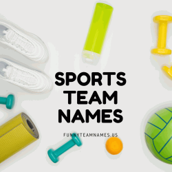 270+ Funny Sports Team Names Ideas for (2021)